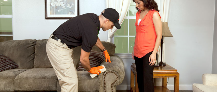 Oak Park, IL carpet upholstery cleaning
