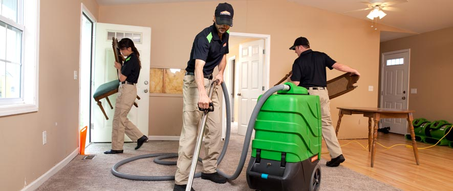 Oak Park, IL cleaning services